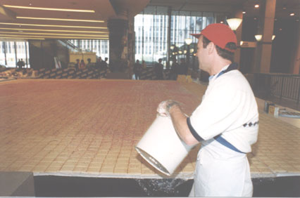 THE MADISON SQUARE GARDEN 1ST WORLD'S LARGEST POP TART