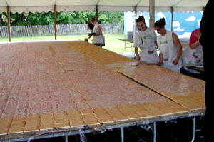 WORLD'S LARGEST POP TART , 30 ft by 40 ft, MADE FOR CHARITY